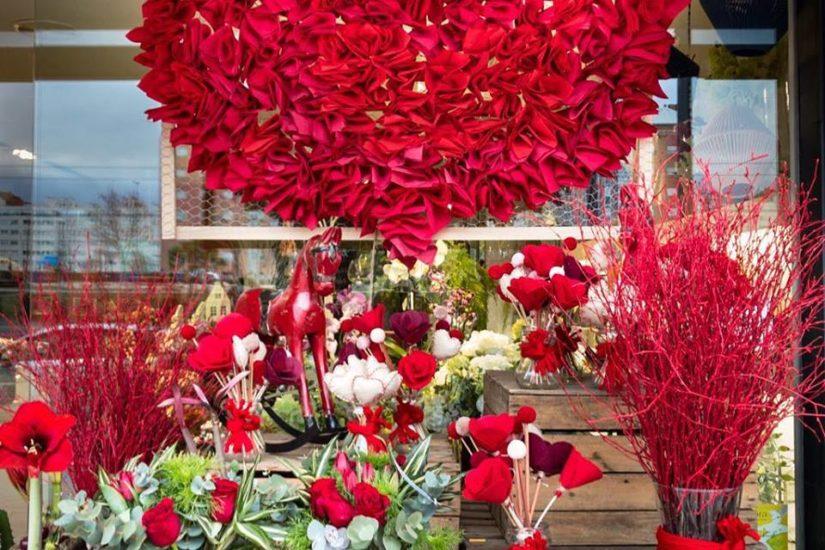 Home Blog Mar De Flores
